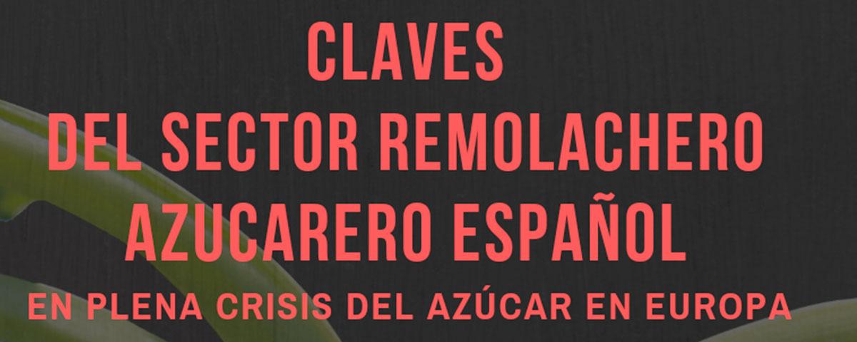 Claves-del-sector-remolachero-azucarero-español_OK-imagen