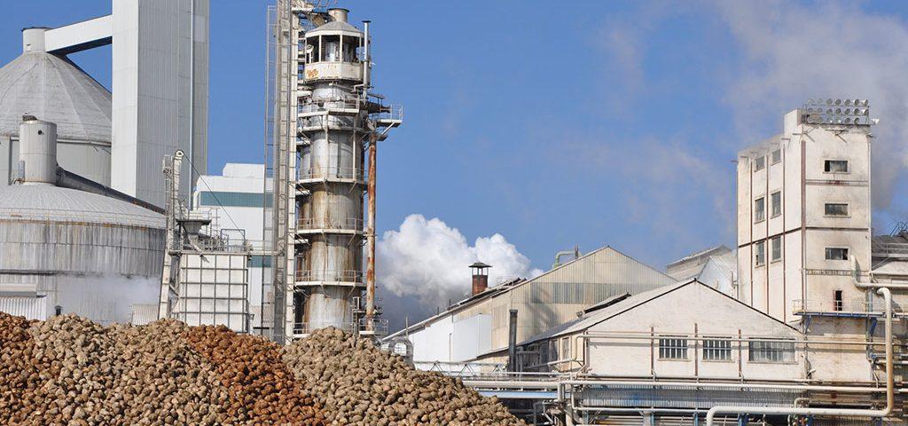azucarera-invertira-mas-69-millones-euros-proximos-5-anos